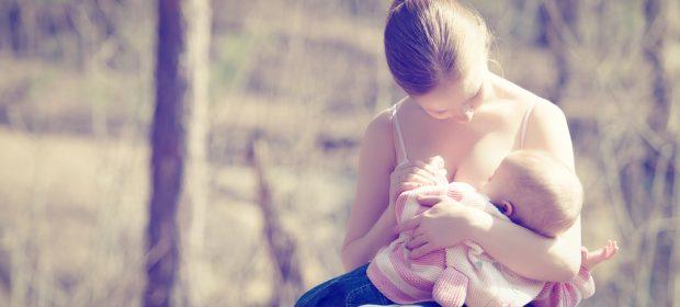 allattamento-lottare-e-nascondersi