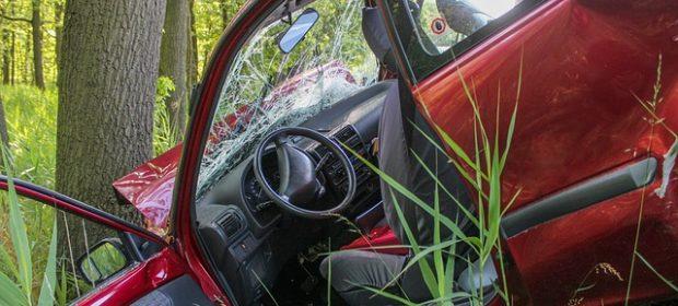 stati-uniti-donna-muore-in-un-incidente-stradale-i-due-figli-sopravvivono-per-giorni-nella-vettura