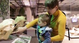 torino-arriva-il-passaporto-culturale-per-mamme-e-bebe