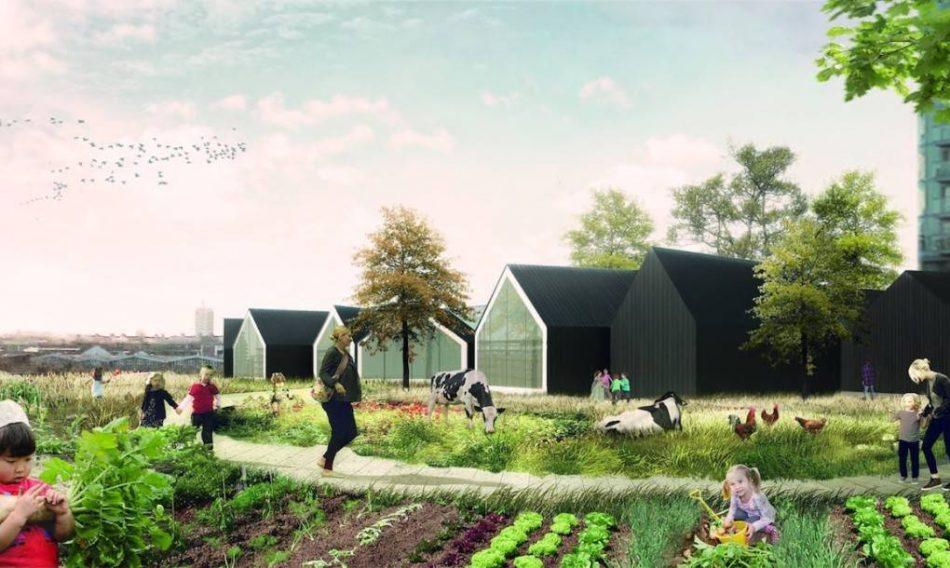 nellasilo-del-futuro-si-impara-a-coltivare-il-proprio-cibo