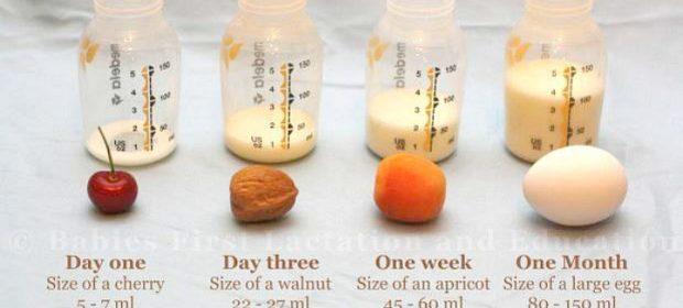 dimensioni-dello-stomaco-dei-neonati-indicazioni-per-lallattamento