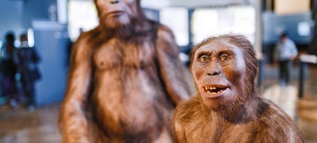 allattamento-svelato-quanto-durava-per-i-nostri-antenati