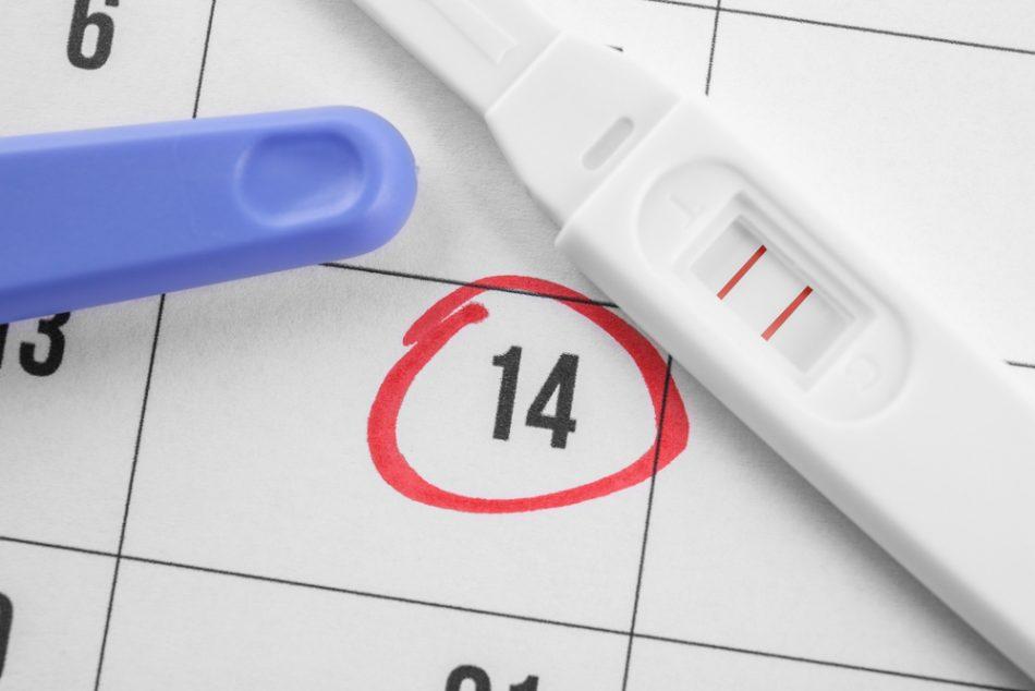 beta-hcg,-l'ormone-della-gravidanza:-quando-si-misura-e-come-puo-variare