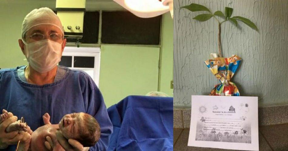 un-ginecologo-brasiliano-regala-un-albero-da-piantare-per-ogni-bambino-nato