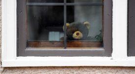 a-caccia-dell'orso-i-peluche-compaiono-sulle-finestre-di-tutto-il-mondo