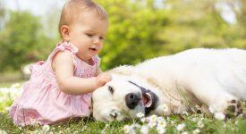 i-benefici-di-crescere-con-un-cane