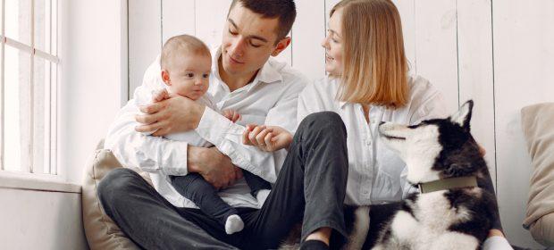 preparare-il-cane-allarrivo-del-neonato