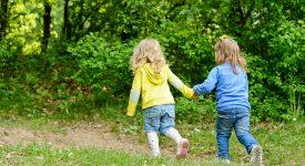 il-verde-aiuta-il-sistema-immunitario-lo-studio-finlandese