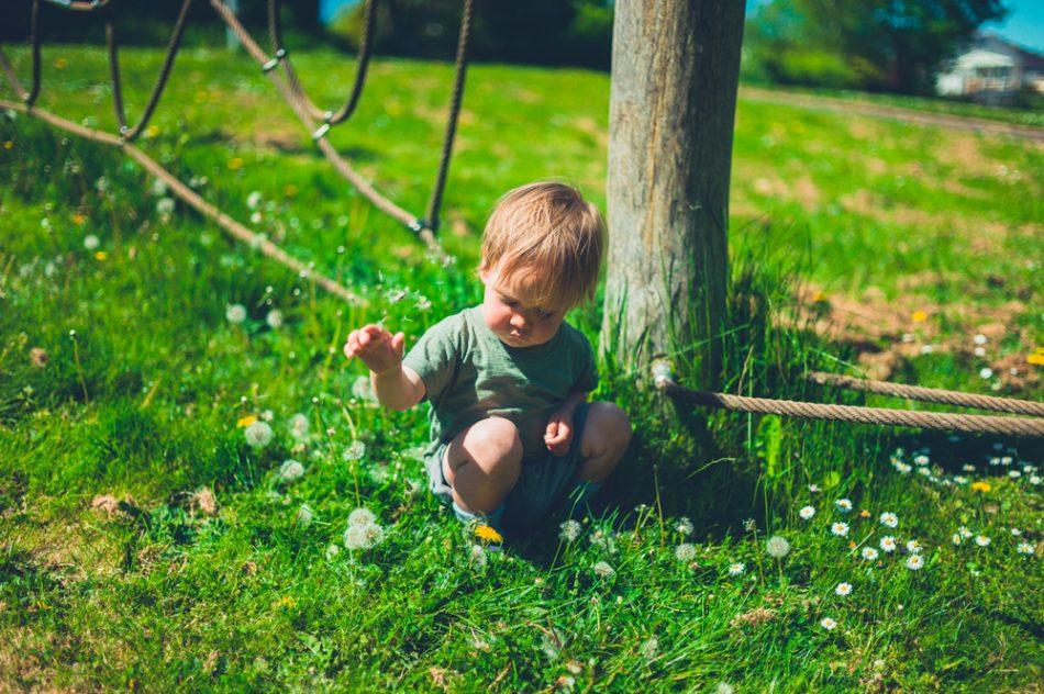 trentino-parchi-giochi-per-bambini-contaminati-dai-pesticidi-tutto-lanno