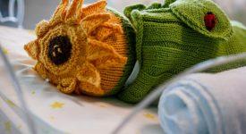 il-dolcissimo-carnevale-della-terapia-intensiva-neonatale-di-niguarda